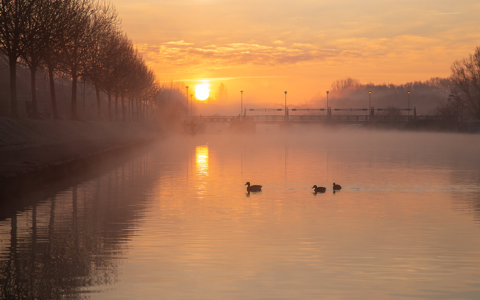 Sfeervolle zonsopkomst boven de Leie aan de oude sluizenkaai in Menen